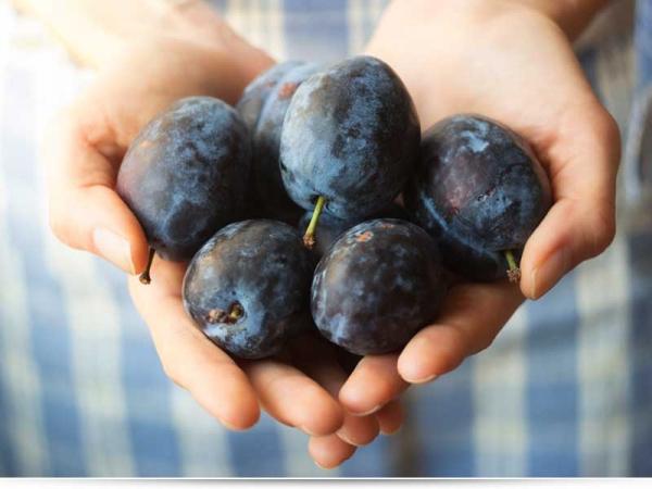 Какие фрукты слабят?