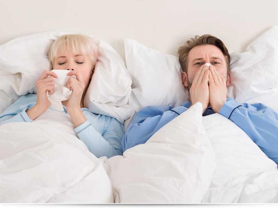 Можно ли заниматься сексом во время простуды?